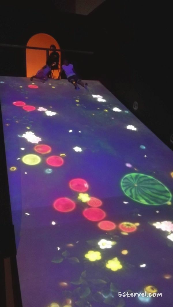 FUTURE WORLD: WHERE ART MEETS SCIENCE Teamlab in singapore Sliding Through the Fruit Field